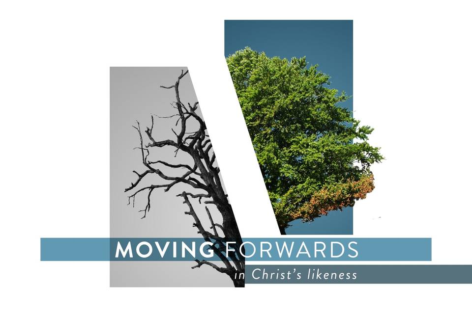Moving Forwards in Christ's Likeness